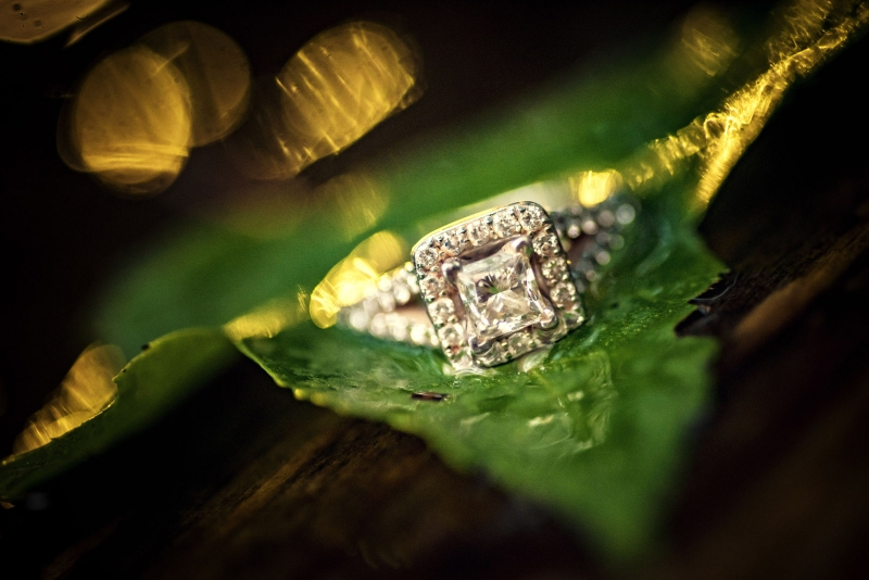 The Susquehannock State Park engagement of Lindsey and Nestor